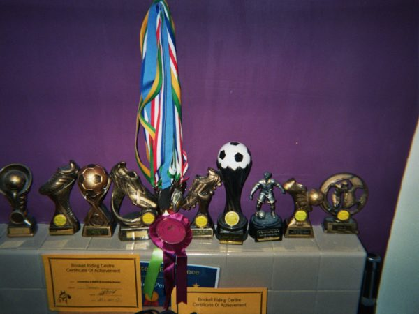 Damien's photograph (for the 21st Century Kids) of a display of his trophies, medals and certificates