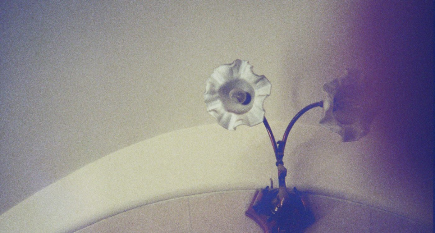 Hersi's photograph (for the 21st Century Kids) of a light fixture at the museum that looks to be a similar shape of a flower.