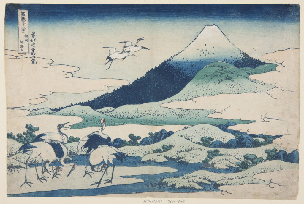 Japanese print of a landscape. In the foreground are five storks. Two additional storks fly over the landscape of hills and forests. Mount Fuji rises through the clouds.