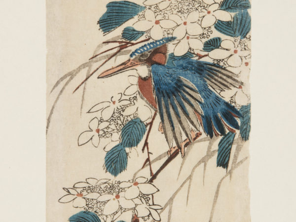 Japanese print of a kingfisher bird sat on a branch amongst the flowers.