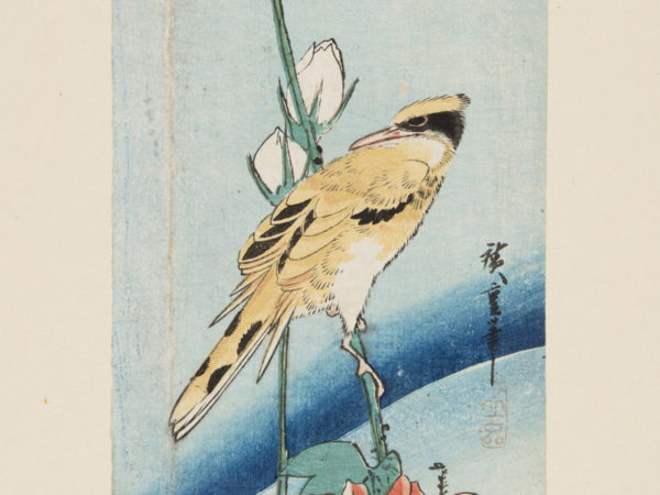 Japanese print of a bird sat on a branch with elaborate flowers.