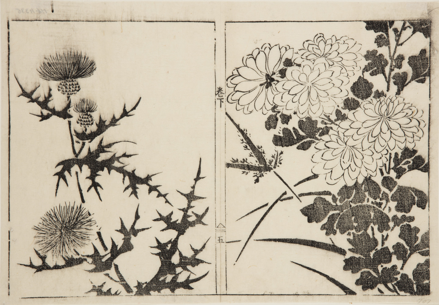 Two Japanese prints one of thistles and spiky leaves, the other of flowers and leaves.