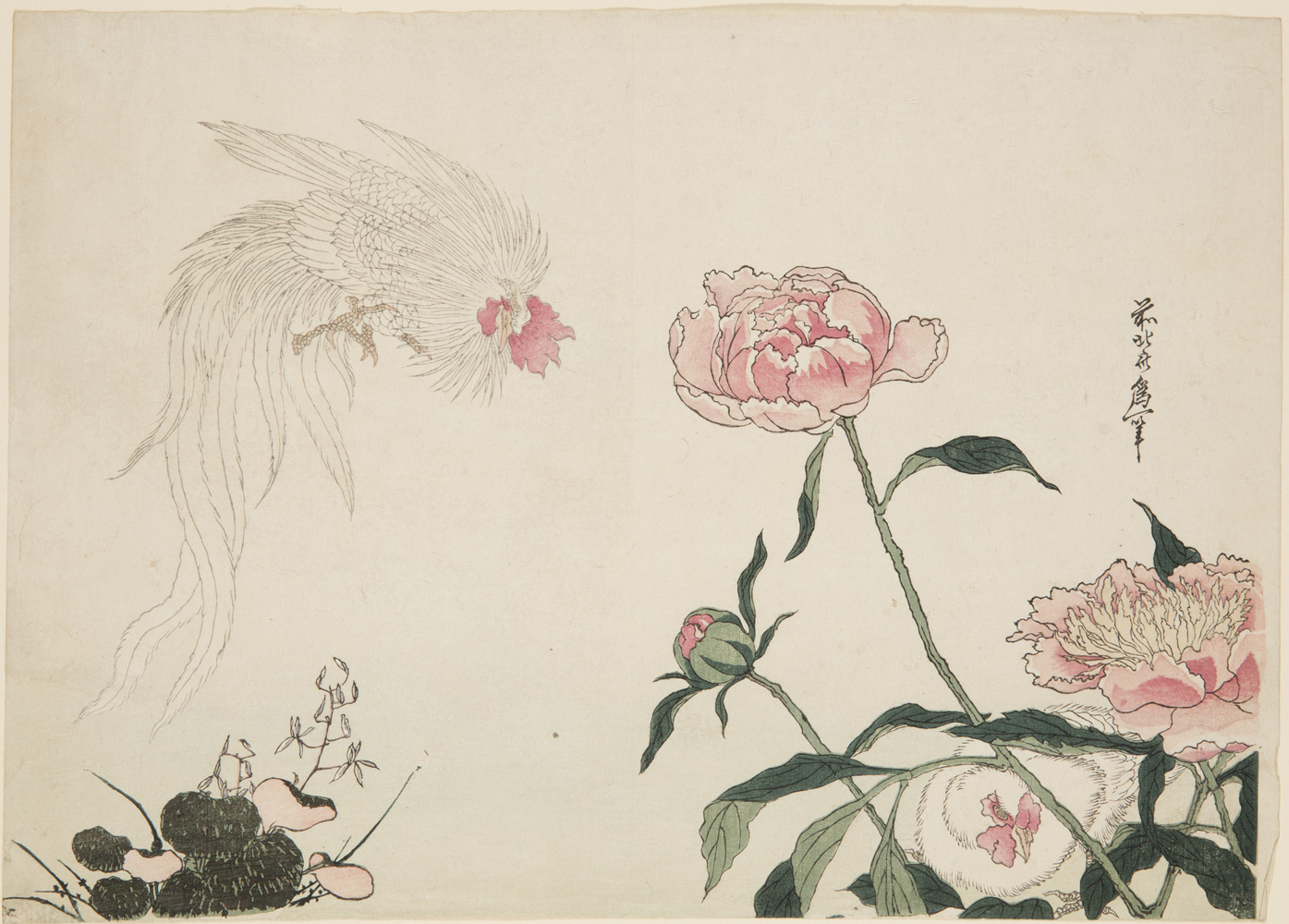 Japanese print of a flying rooster with long feathers on the left looking at a small hen crouching behind flowers on the right.