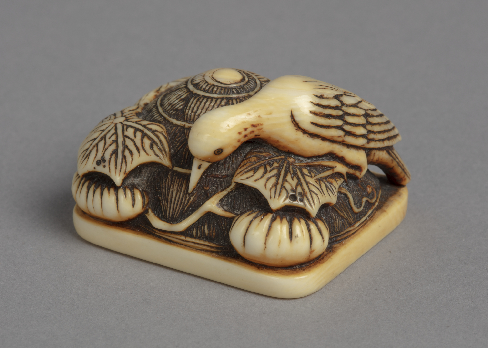 A Japanese ivory netsuke of a stork bird perched on a large straw hat discarded among pumpkins, vines and leaves.