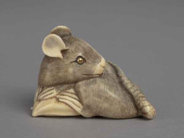 A Japanese ivory netsuke of a rat crouched over a chestnut its head turning back over its left shoulder.