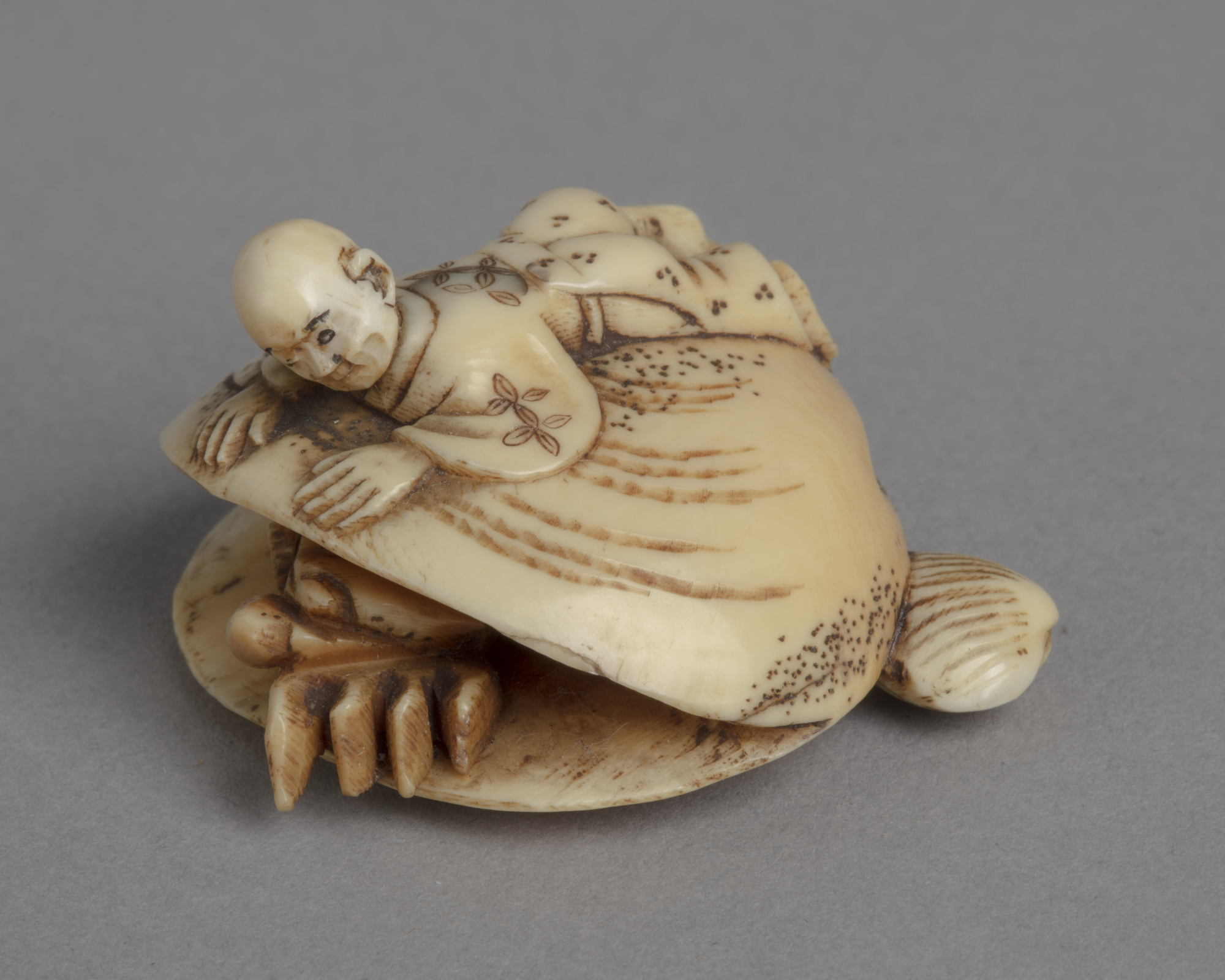 A Japanese ivory netsuke of a boy lays on his front on the back of a large clamshell, from which a crab emerges.