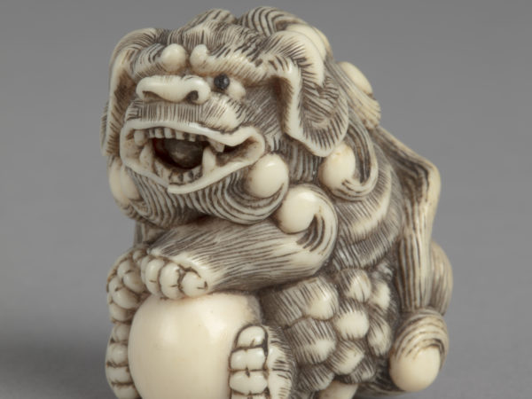 A Japanese ivory netsuke of a Buddhist lion with curly mane holding a smooth white ball in its four paws.