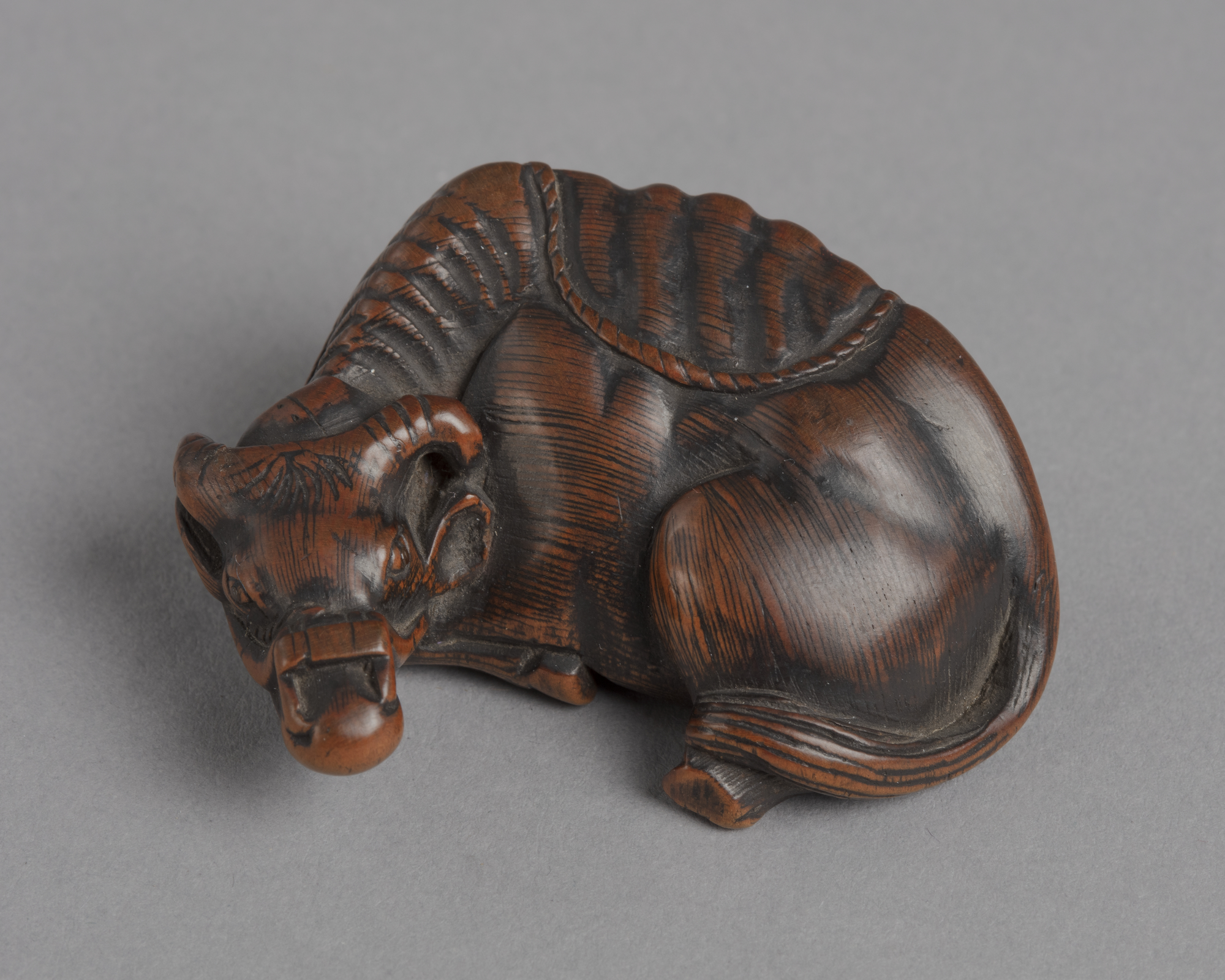 A Japanese boxwood netsuke of a recumbent ox with a bridle on its head.