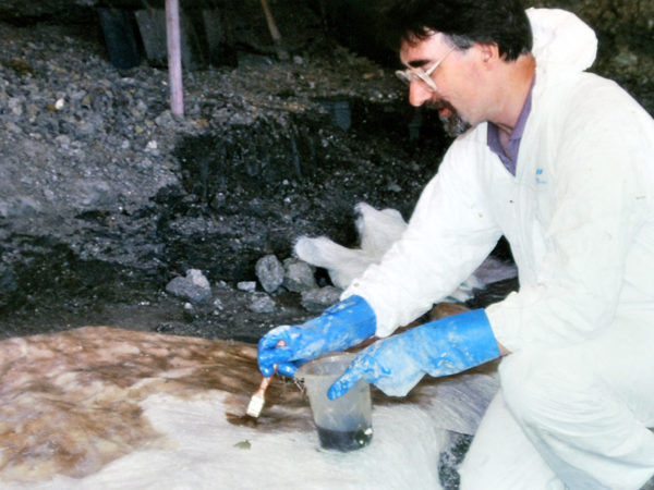 A man in a white boiler suit and blue gloves brushes a fossil