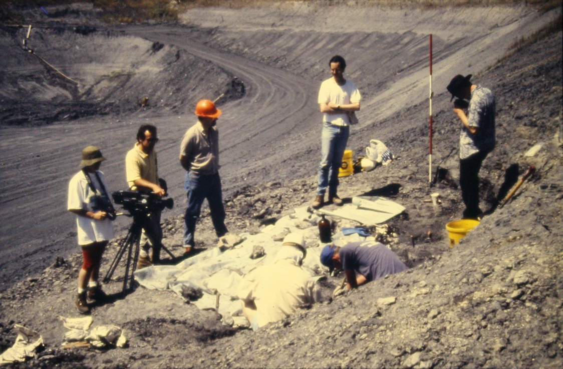 a group of five people stand around a fossil, one is taking a photo. another person is crouched down working on the fossil