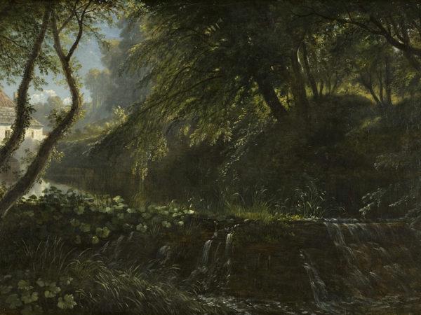 Painting of dark woodland scene